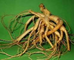 Валериана корень, 50 гр